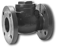 Morrison 246 Swing Check Flanged
