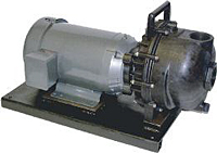 1 1/2 & 2 in. Banjo Electric Motor Driven Polypropylene Centrifugal Pumps