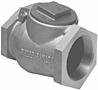 3 in. Threaded Swing Check Valve