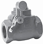 Morrison Bros Threaded Swing Check Valves