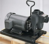 2 in Banjo Electric Motor Driven Cast Iron Centrifugal Pumps